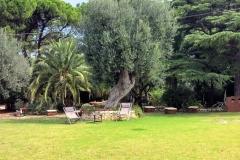 Gardens of Puglia