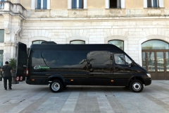 Mini bus Viva Italy Tours, LLC