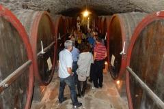 wine-cellar-Tuscany